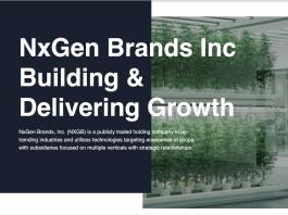 nxgb confirms blockchain partnership opportunity grows