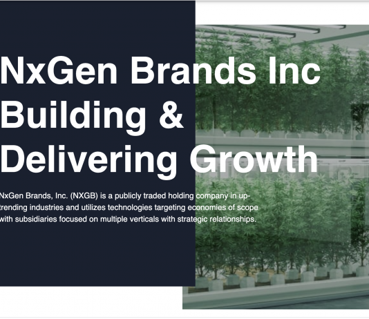 nxgb confirms blockchain partnership opportunity grows